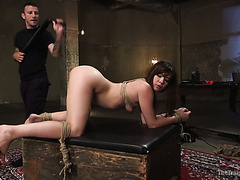 Leggy slave hoe Alison Rey gets ass whipped and pussy doggystyled extremely hard