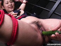 AV cutie Sayaka is tortured by cucumbers and carrots in prison