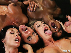Wild orgy with quartet of super stacked busty vixens
